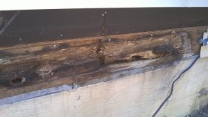band-board-rotted-1