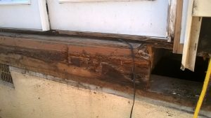 band-board-rotted-3